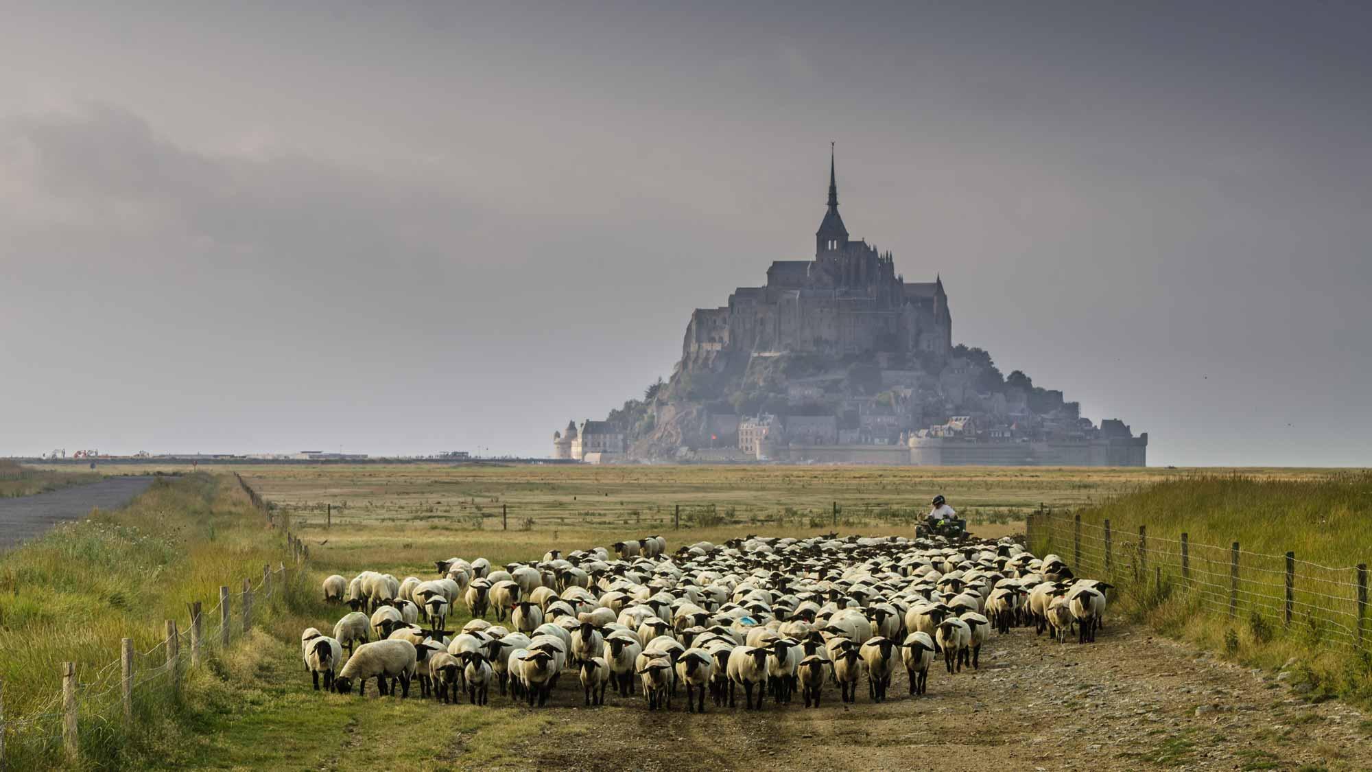 baie-du-mont-saint-michel-03.jpg